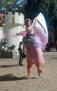 Pink Stilt Faerie