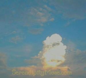 Day 202: Storm Cloud