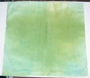 Day 216: Fabric Dye Experiment 2