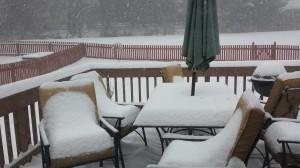 Day 342: Snowfall