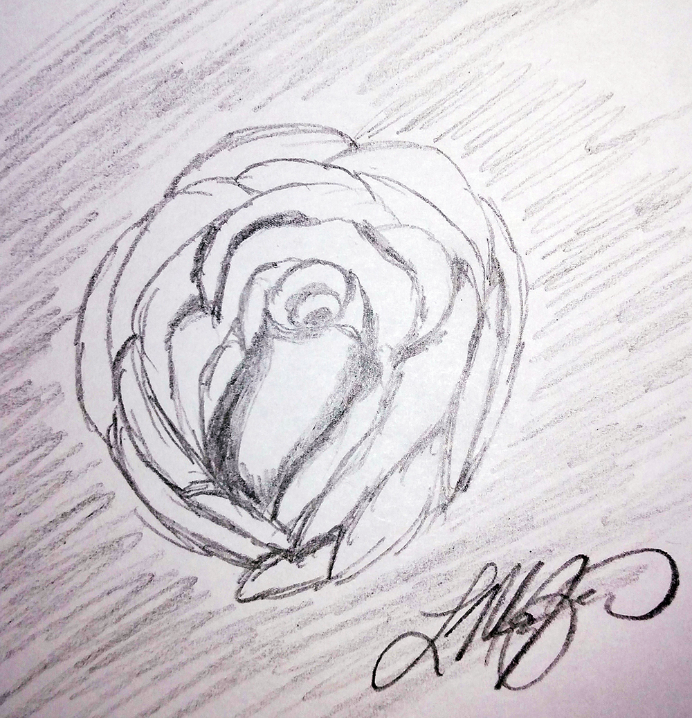 """""""A Rose By Any Other Name"""", pencil"""